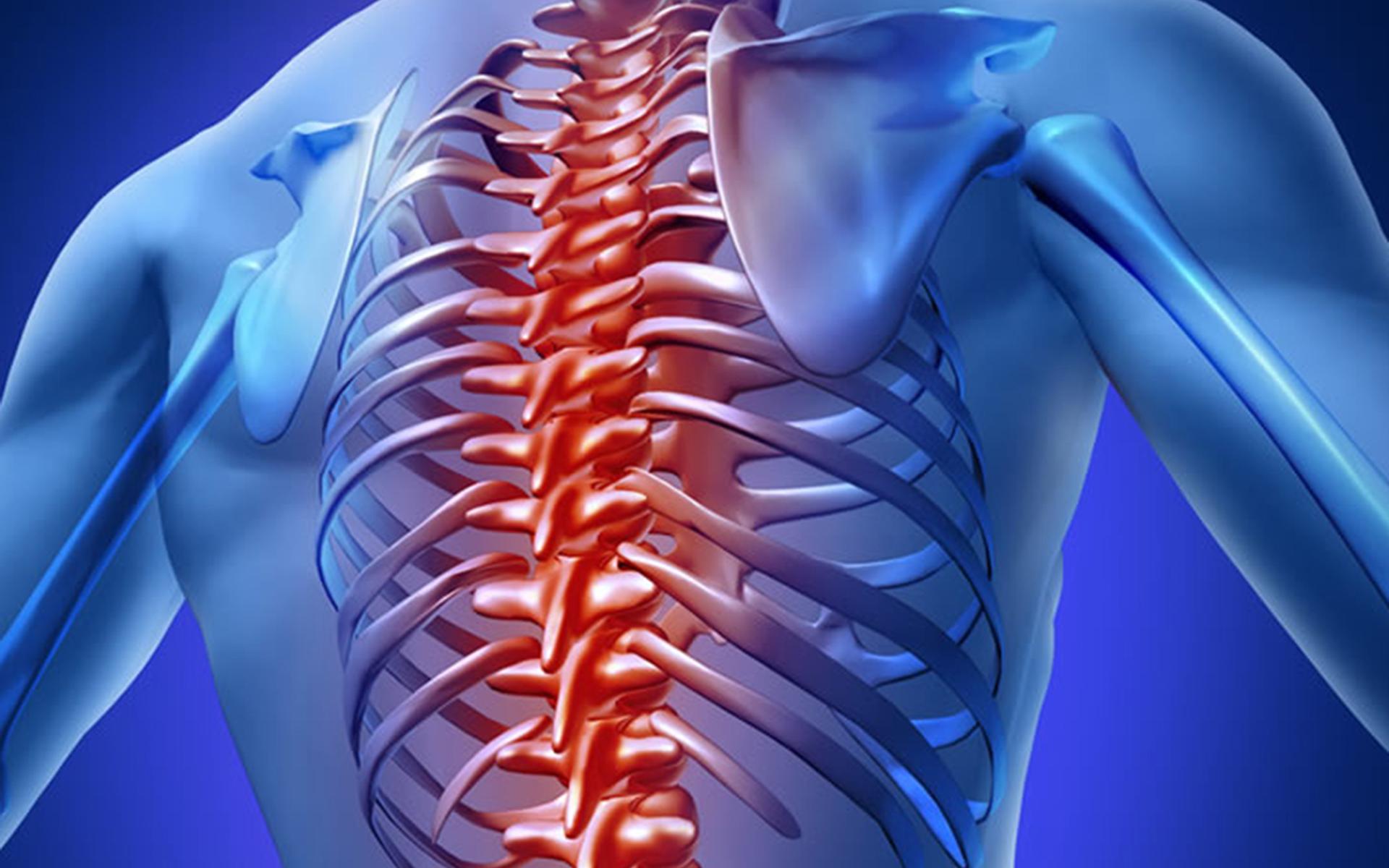 Coloanei vertebrale jurnal de durere 2014